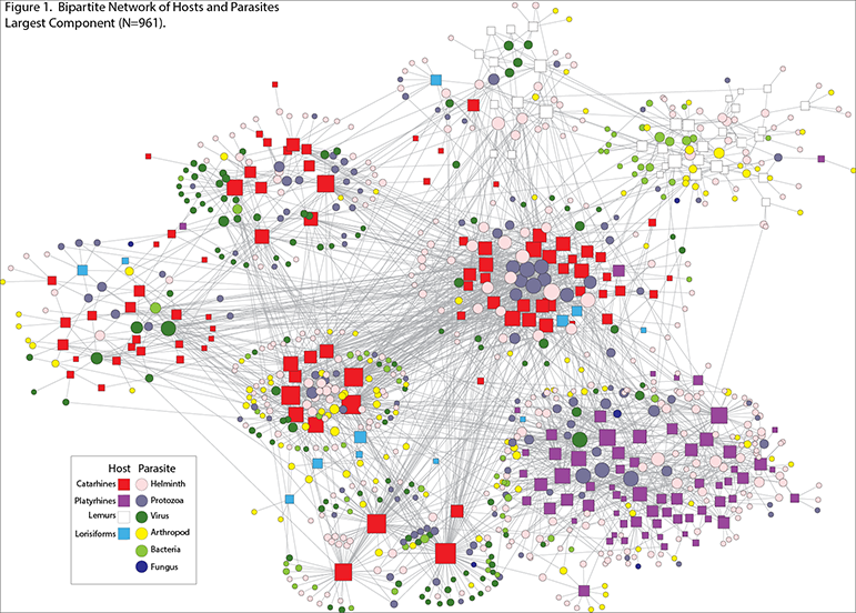 A web diagram showing connections between hosts and parasites