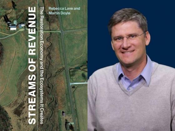 Streams of Revenue by Martin Doyle